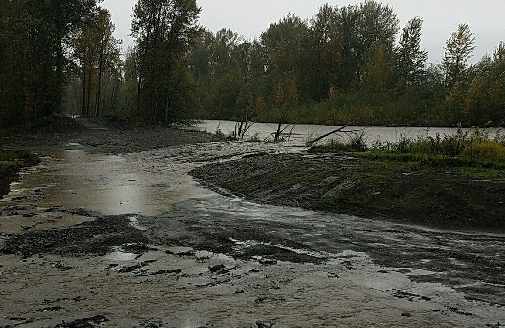 Puyallup Watershed – FFTF